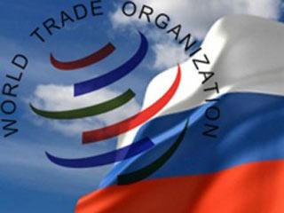 Вступление России в ВТО изменит структуру импорта базовых полимеров