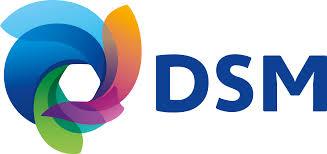 Компания DSM Engineering Plastics открыла новый офис в США
