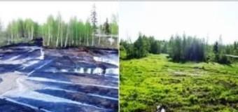 Комиссию по приемке рекультивированных земель предложили создать в Тюменской области