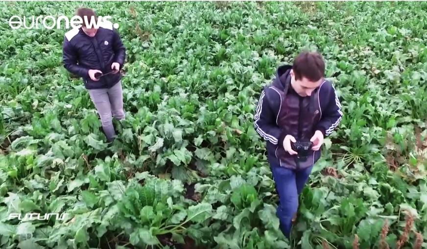Глобальные наблюдения Земли из космоса! EuroNews рассказал об успехах украинских ученых в области агромониторинга!