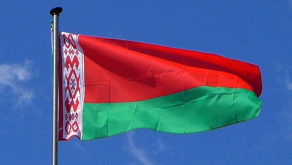 Импорт ПЭ и ПП в Беларусь вырос по итогам 2014 года