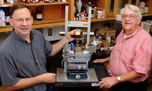 Разработан метод получения ценных химических соединений из биомассы