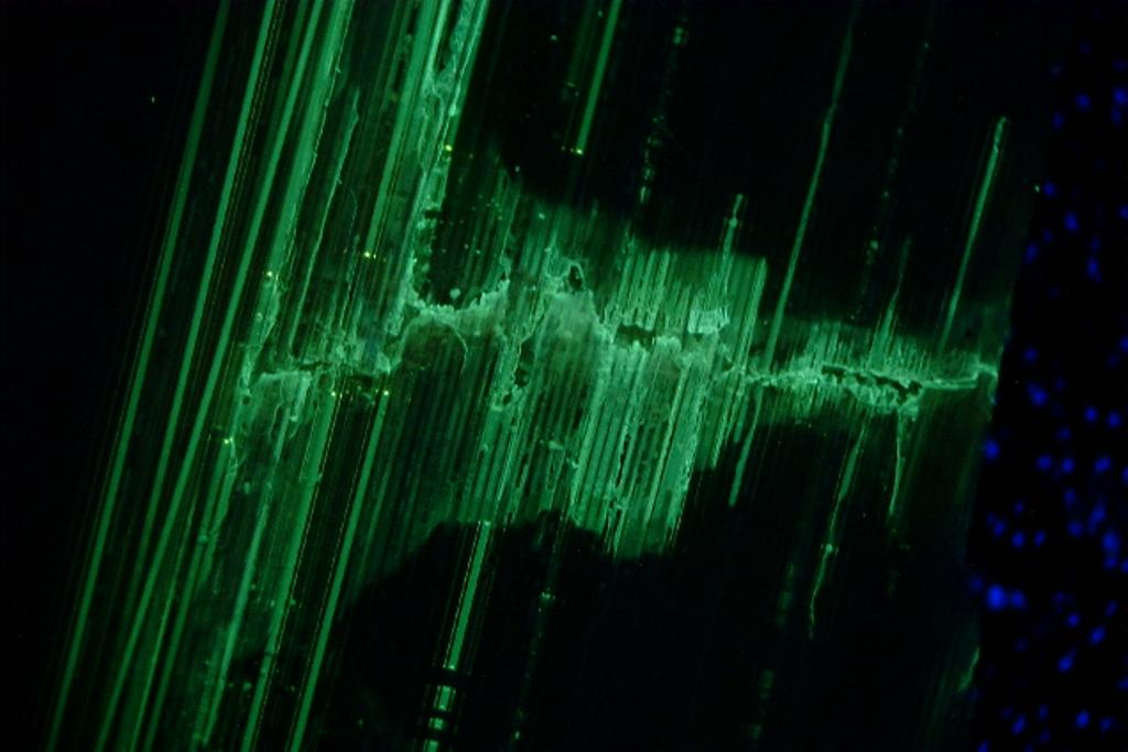 самовосстанавливающийся полимер под воздействием ультрафиолетового излучения разработала группа ученых из США и Японии