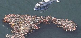 Представлен доклад о загрязнении береговой линии Китая