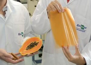 Бразильские ученые создали съедобный пластик
