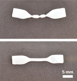 shape-memory-elastomer