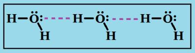 Водородные связи между молекулами воды