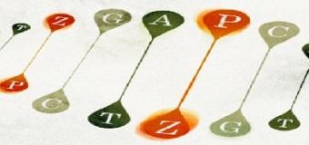 Пара нуклеотидов Беннера: ученые из Флориды расширили генетический алфавит