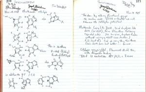расширенные генетический код записная книжка Беннера