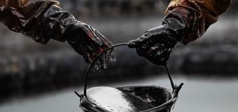 Нефть сегодня 24 ноября 2017: котировки, новости, прогнозы