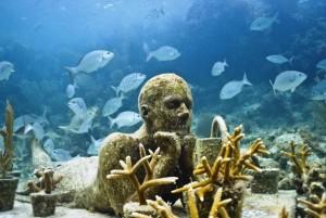 Мировой рынок морских биотехнологий