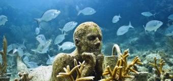 Мировой рынок морских биотехнологий составит $6,4 млрд в 2025 году