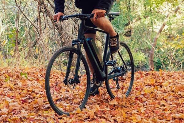 Электрический велосипед Daymak ec1 в лесу
