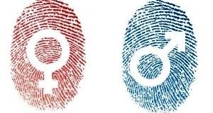 Определить пол по отпечаткам пальцев позволят новые достижения ученых