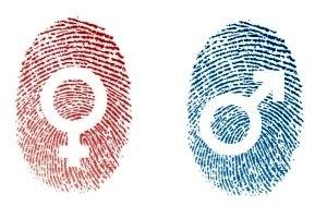 Определить пол по отпечаткам пальцев теперь реально!