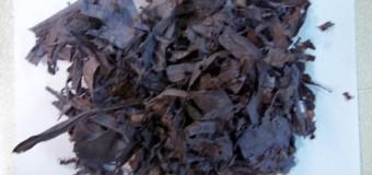 В БГТУ исследовали перспективы производства композитов из полимерных отходов ОАО «Белцветмет»