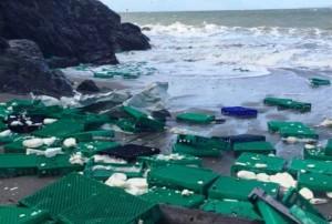 Побережье Сан-Франциско завалило пластиковыми пакетами