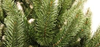 Искусственные новогодние елки: как выбрать?