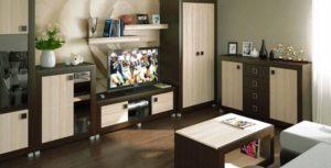 Мебель Белдрев - это один из лучших образцов белорусской мебельной индустрии. Читайте пару советов по выбору наиболее подходящей мебели для гостиной.