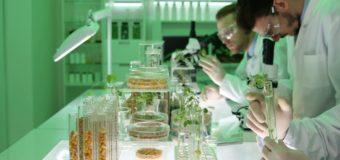 НАН Беларуси запускает научно-производственный центр биотехнологий