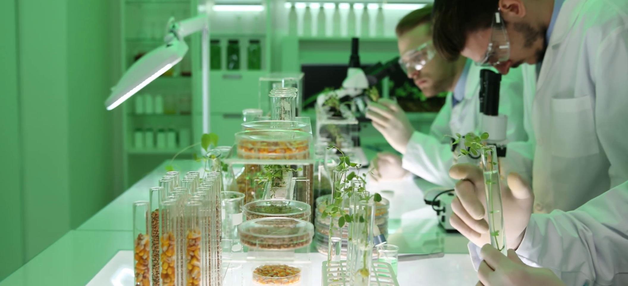 Научно-производственный центр биотехнологий официально откроют 01 марта 2019 года в Минске. Таки данные приводит портал HimFAQ.ru (Химфак Ру) со ссылкой на пресс-службу Национальной академии наук Республики Беларусь (НАН Беларуси).