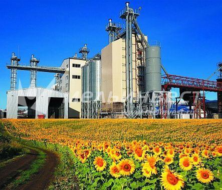 Зерносушилка шахтного типа Eco Profi сушит все виды масличных культур — рапс, подсолнечник, горчицу, лен, кукурузу и другие. ПОдробности.