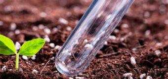 Как это работает: агрохимический анализ почвы для полноценного развития угодий