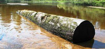 Как это работает: очистка дна искусственного водоема