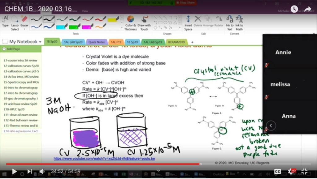 практическое обучение в интернете: преподаватель Мишель Доуски теперь общается со студентами через интернет и преподает химию в онлайн-лаборатории.(фото: Мишель Доуски, UC Berkeley).