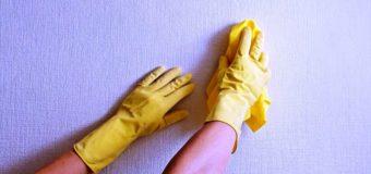 Специалист: рекомендации по уходу за моющимися обоями